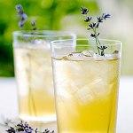 lavender-tea cold