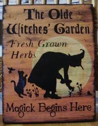 Witches Herb
